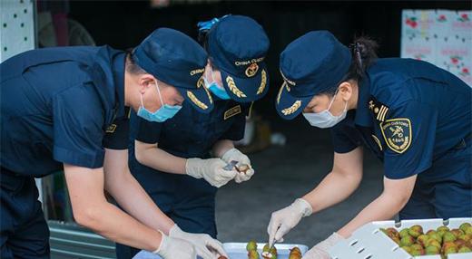 广东上半年外贸总值3.06万亿元 防疫物资出口增1.7倍