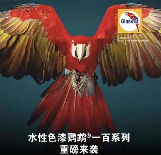 巴斯夫举行发布会,宣布最新产品正式进入中国市场